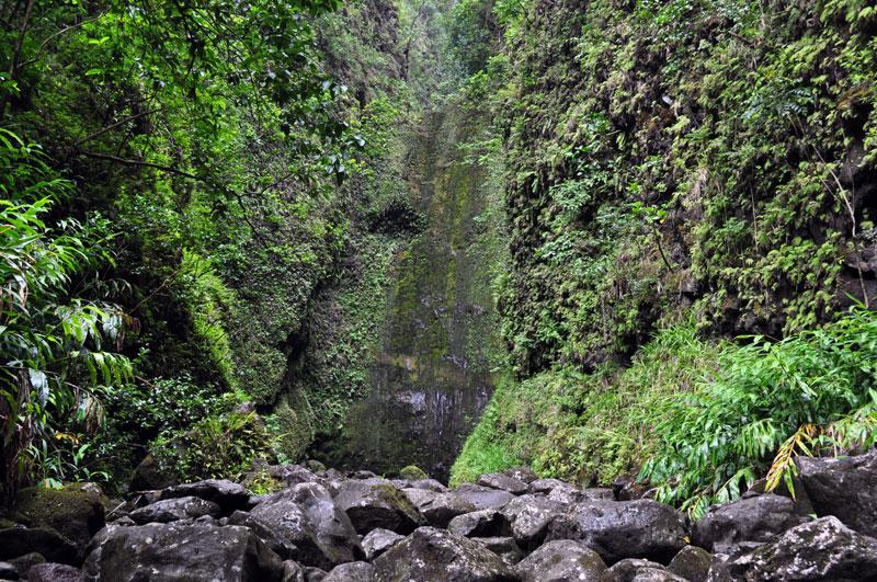 maui_waterfall_2
